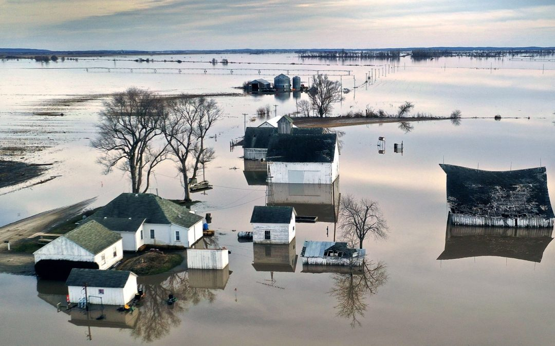 Companies Expect Climate Change to Cost Them $1 Trillion in 5 Years